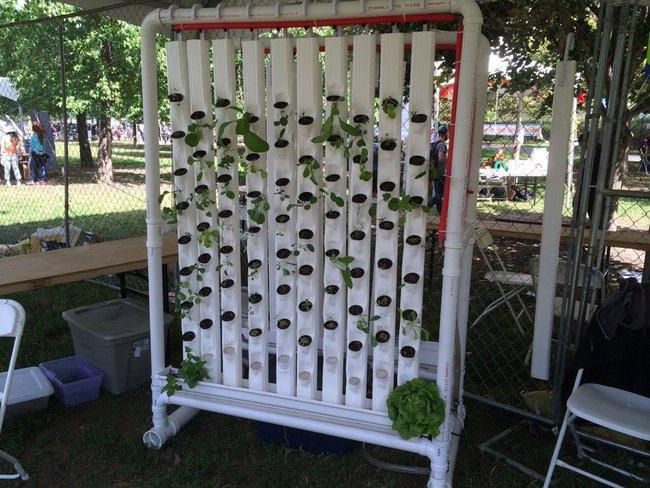 Vertikální_ hydroponic garden