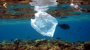 plastic_ocean_of_the_universe